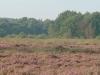 ochtendrit-lr-pc-huneruiters-2002-7-800