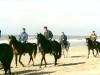 strandrit-zandvoort-lr-pc-huneruiters-800